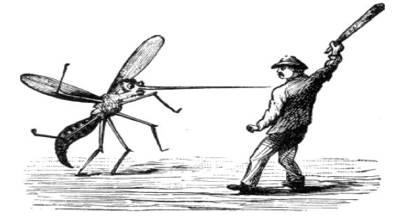 mosquito-war
