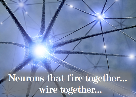 neurons-that-fire-together