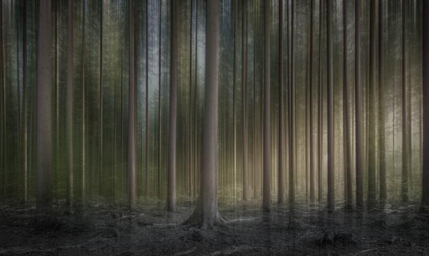 robert-mehlan_autumn-dream_a0fgsq