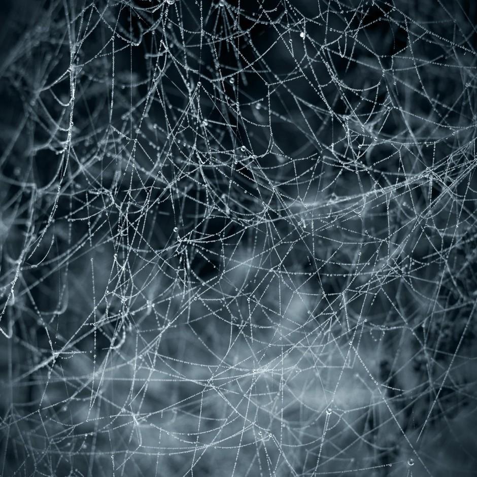 roman-jager_network_zefqsq